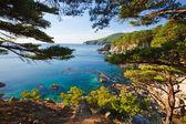 Russian primorye seashore — Stock Photo