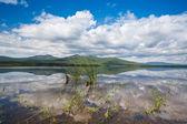 Russian Primorye beautiful lake — Stock Photo