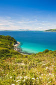 Summer landscape, the blue sea — Stock Photo