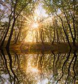 湖の秋の太陽 — ストック写真