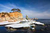 Winter seascape — Stock Photo