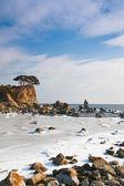 Winter sea landscape, sea ice — Stock Photo