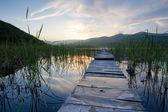 Summer landscape, a bridge at sunset — Stock Photo