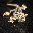 Jewel from gold in the form of the lizard — Stock Photo