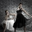 Women twins in is identical-different dresses near a brick wall - Stock Photo