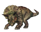 Triceratops — Stock Photo