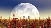 Planetas — Foto de Stock