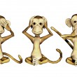Three Monkeys — Stock Photo