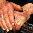 Hard work hands of an old lady - Stock Photo