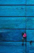 Blue wooden door with flowers — Stock Photo