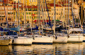Vieux port (oude haven) in cannes, frankrijk — Stockfoto