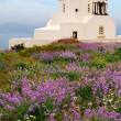 Countryside chapel in Santorini, Greece - Foto Stock