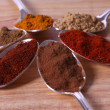 Ground Spice Close-Up — Stock Photo