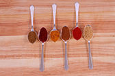 A row Of Spices — Stock Photo