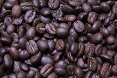Grains de café, gros plan — Photo