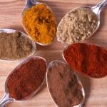 Spice Powders — Stock Photo #3467830