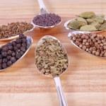 semena koření — Stock fotografie