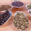 Spice Seeds Close-Up — Stock Photo