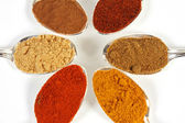 Six Spices Close-UP — Stock Photo