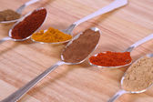 Spoons Of Spice — Stock Photo