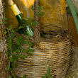 Old Basket and Wine — Stock Photo