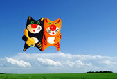 Two cats in the sky with fish — Stock Photo