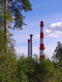 Pipe thermal power plant and trees — Stock Photo