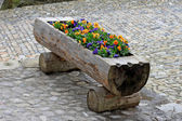 Flower bed in old castle — Stock Photo