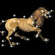 Sign on zodiac constellation Lion (Leo) — Stock Photo