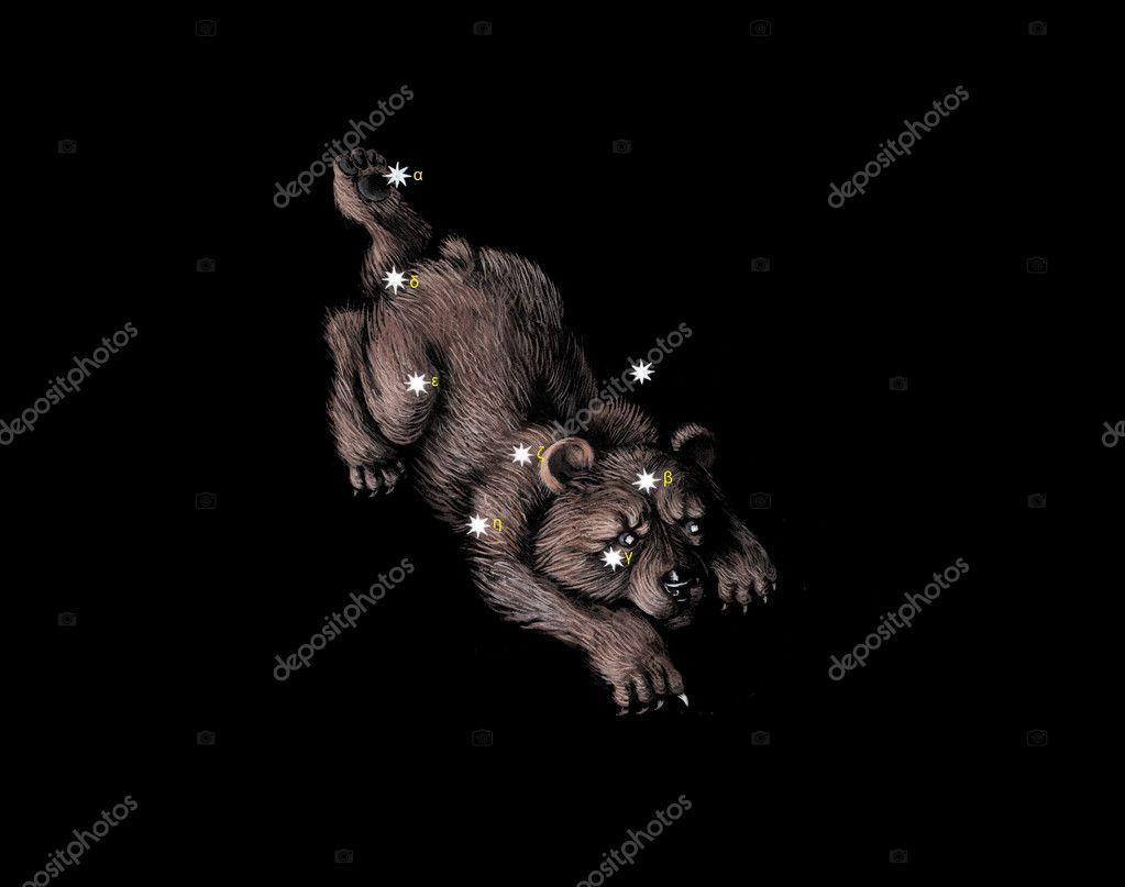 Ursa Minor Little Bear Myth Little Bear  Ursa Minor