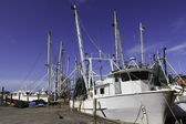 Gulf Shrimp Boats — Stock Photo
