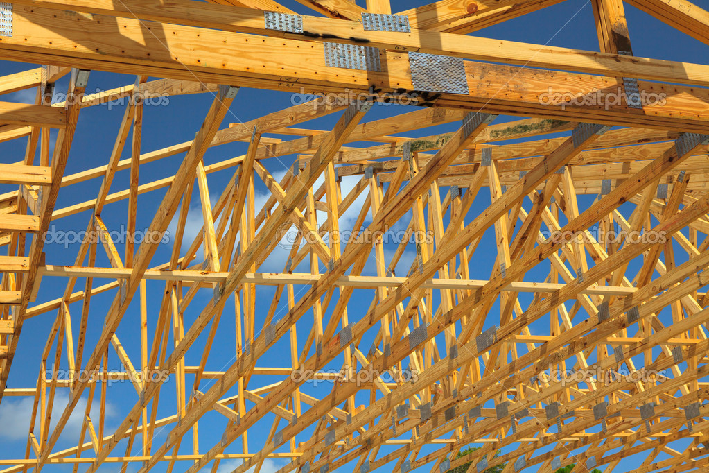 Wood Trusses Stock Photo Orchiflower 3509498