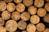 Firewood — Stockfoto