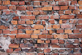 Red brick wall — 图库照片