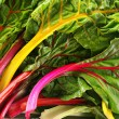 Rainbow chard - Stock Photo