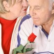 Senior couple in love — Stock Photo #3469179