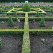 An English Knot Garden — Stock Photo