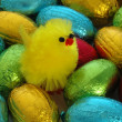 Chocolate Eggs and Chick — Stock Photo