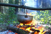 Campfire in the wood — Stock Photo