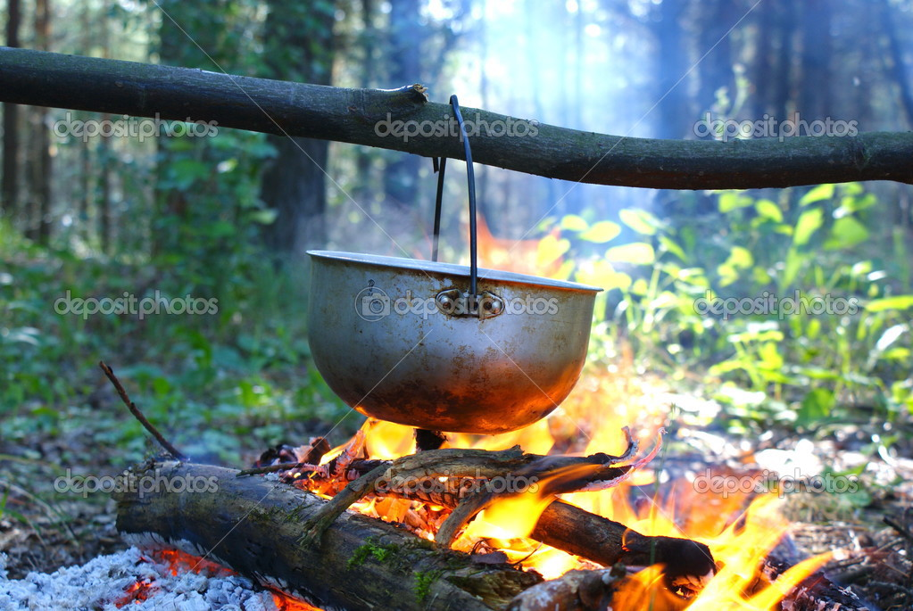 Campfire in the wood.Kijiv.Ukraine — Stock Photo #3474951