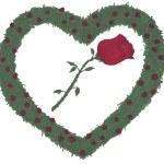 ilustração de roseiras de coração rosa — Foto Stock