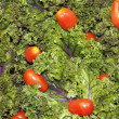 Red Kale Tomatoes Close Up — Stock Photo