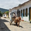 Stock Photo: Horsewagon in Paraty