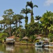 Stock Photo: River of Paraty
