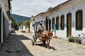 Horsewagon in Paraty — Stockfoto