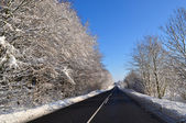 Asphalt road in the winter — Stockfoto