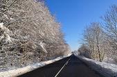 Asphalt road in the winter — Stock Photo