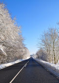 Asfaltweg in de winter — Stockfoto