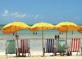 Calm beach in Brazil — Stock Photo