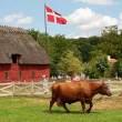 The Funen village - Stock Photo